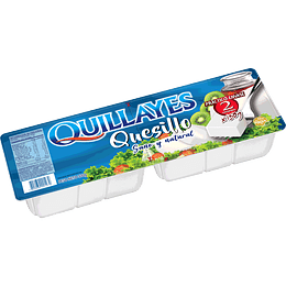 QUESILLO QUILLAYES 300 GR