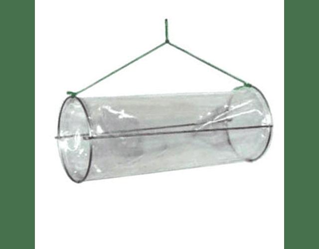Covo p/ Isca de Plástico Transparente - Narciso