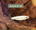 Isca Artificial Jackall - Bonnie Silent 107