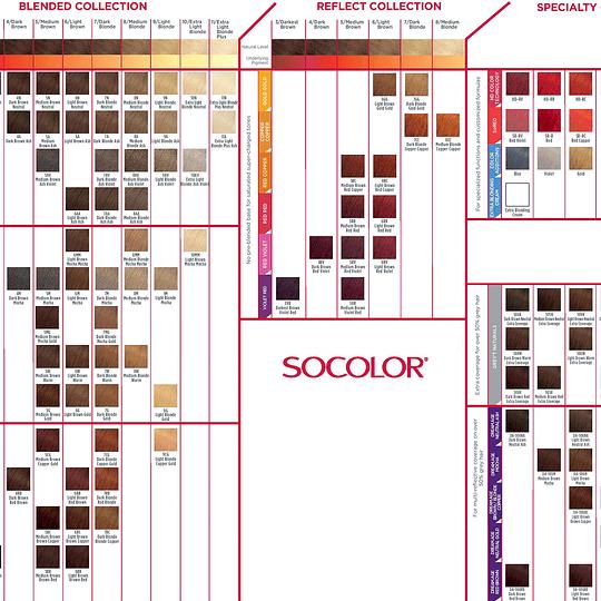 CARTA DE COLOR SOCOLOR