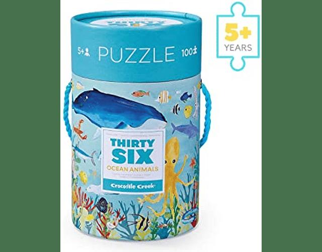 Thirty Six Ocean Animals