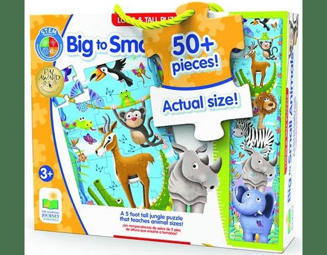 Big To Small Animals