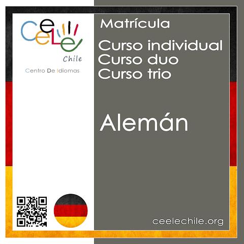 Matricula curso Individual/Duo/Trio de Alemán