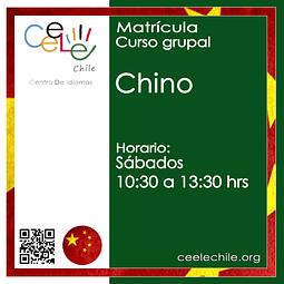 Matricula curso grupal Chino SÁBADO de 10:30 A 13:30 hrs.