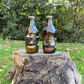 Pack de 24 Pozo de Oro y Arrayanes (Rubia Ale y Red Ale)