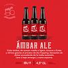 Ámbar Ale • 12 Botellas 330cc
