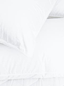 Almohada de Pluma Classic Premium 850FP