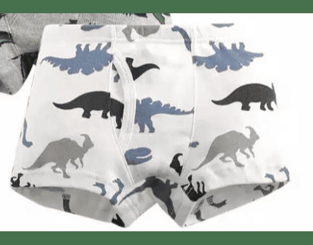 Boxers Dinosaurios