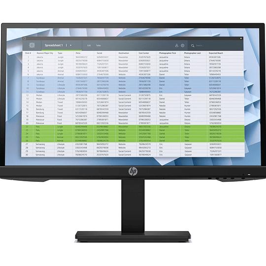 HP Monitor P22h G4 LED 21.5
