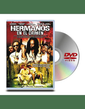 DVD Hermanos En El Crimen