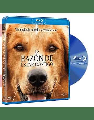 Blu Ray LA RAZON DE ESTAR CONTIGO