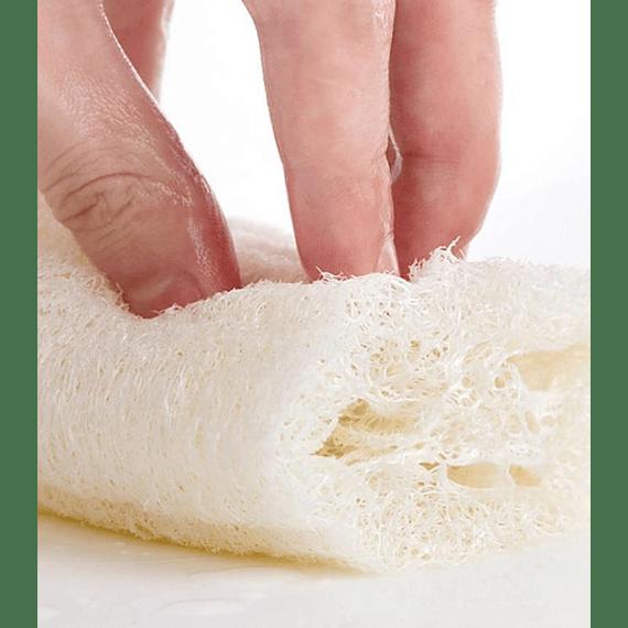 Luffa (Esponja Natural) 25 Cms