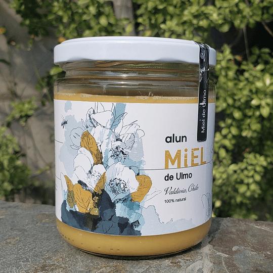 Miel de Ulmo 100 % Natural 500 Grs