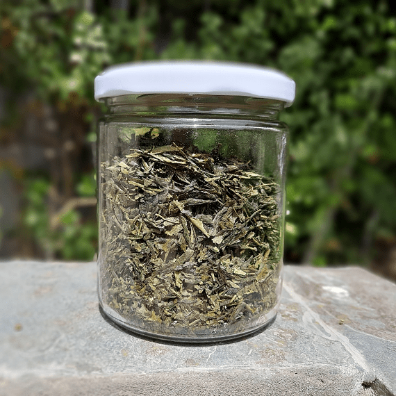 Té Verde Sencha 75 Grs