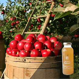 Jugo Manzana 100% Natural Retornable 300ml
