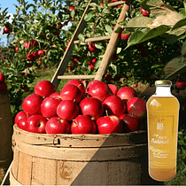 Jugo Manzana 100% Natural Retornable 1 Lt