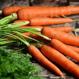 Zanahorias 1 Kg