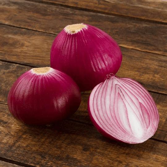 Cebolla Morada 1 Un