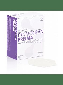 PROMOGRAM PRISMA: Matriz de Metaloproteasas y Colágeno con Plata. Disponible en diferentes Medidas