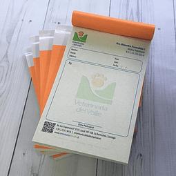 Recetas Medicas Ecologicas
