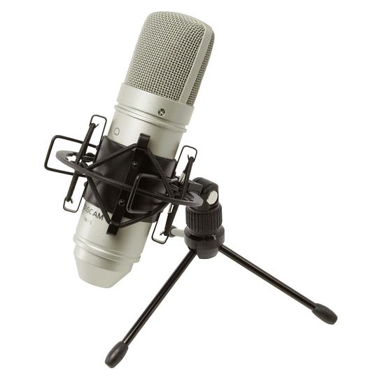 Microfono Condensador XLR Tascam TM-80
