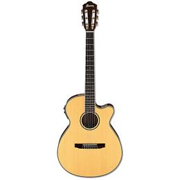 Guitarra Electroacustica Ibanez AEG10NII NT NYLON