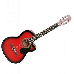 Guitarra Acustica Vizcaya ARCG39 RB