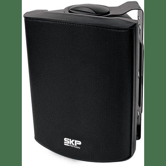 Parlante Ambiental Pasivo SKP SK-106