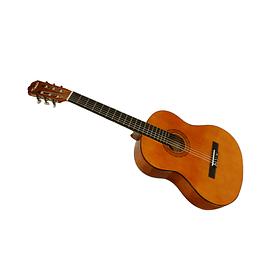 Guitarra Acústica La Española ESP-39