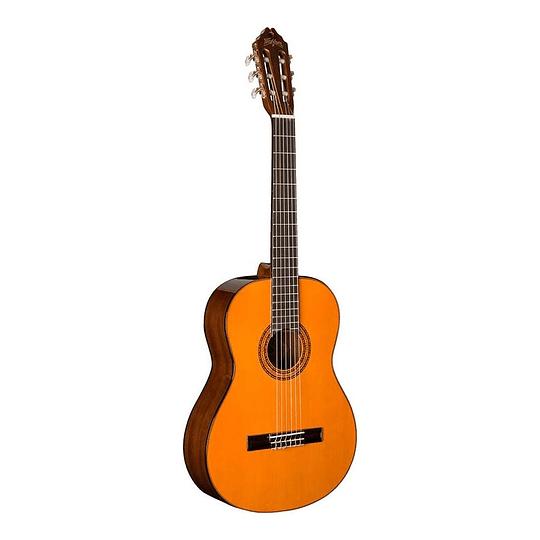 Guitarra Acústica Washburn C5