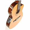 Guitarra Electro Acustica Ibanez GA5TCE