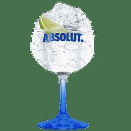 """Copa Absolut """" La Diversidad"""" 600cc"""