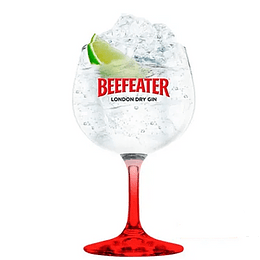 Copa Gin Beefeater 600cc