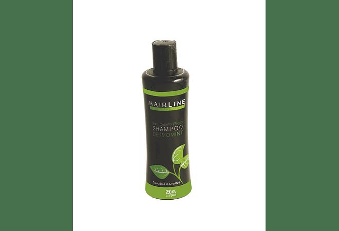 Shampoo Dermomint