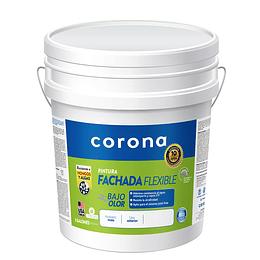 Pintura fachada verde pino 1/5 - Corona
