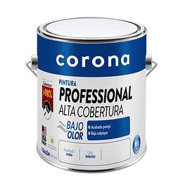 Pintura professional alta cobertura blanco 1/1 - Corona