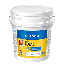Pintura total blanco 1/2 - Corona