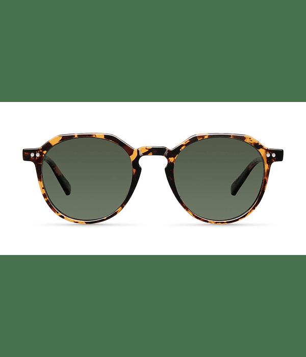 Anteojos de sol Chauen Tigris  Olive