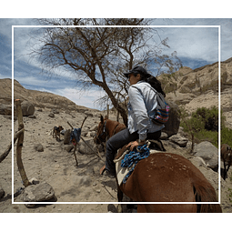 Horseback riding in Huasquiña