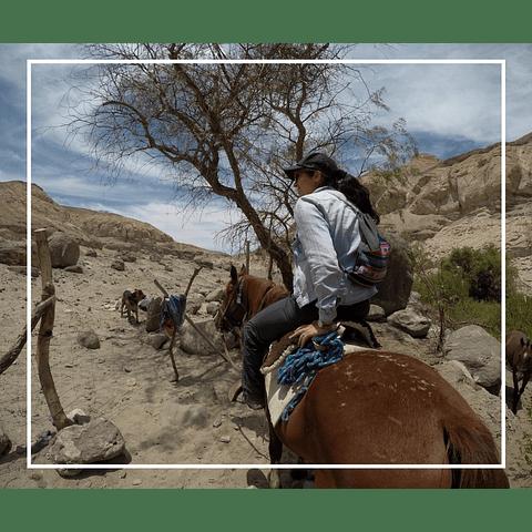 Cabalgata en Huasquiña