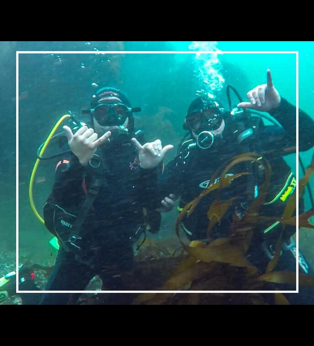 Diving Tour