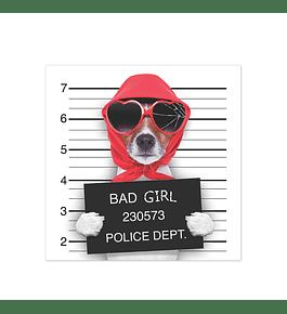 Bad Diva Lady Dog