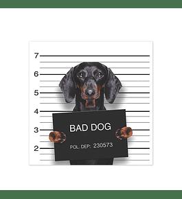 Bad Hot Dog