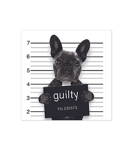 Bad Bulldog Francés
