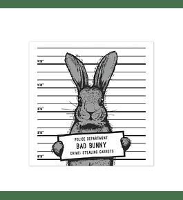 Bad Rabbit