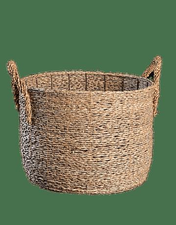 Canasto Chato