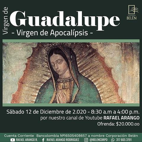 Ticket Virgen de Guadalupe