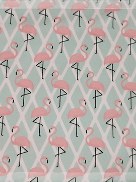 Licra flamingos