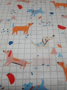 Cães Coloridos