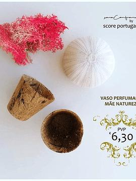 Vasos Perfumados Mãe Natureza